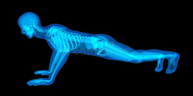 Bardzo szczegółowy półprzezroczysty 3D ciało mężczyzna robi pchnięciu up ilustracji