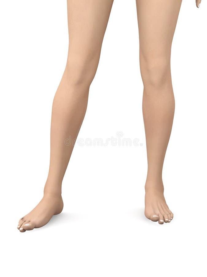 Bare Feet royalty free illustration