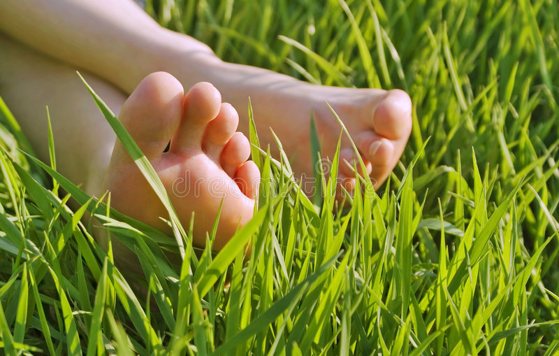 Download Bare Feet In The Grass Stock Photo - Image: 2312320