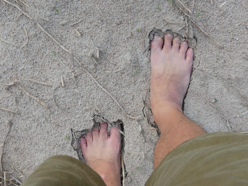 Bare feet of a man on natural soft sandy soil ground stock photo