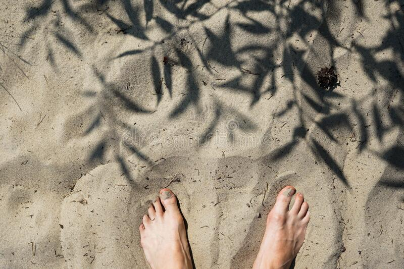 Bare feet in sand near plants shadow sunny vacation day stock images