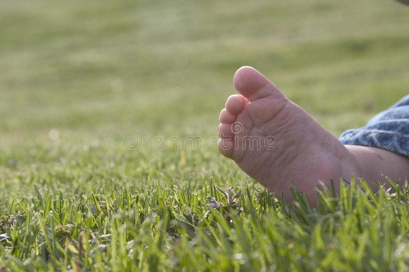 Download Bare foot stock photo. Image of grass, toes, green, barefoot - 155764