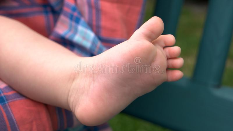Bare foot of newborn baby. royalty free stock photo