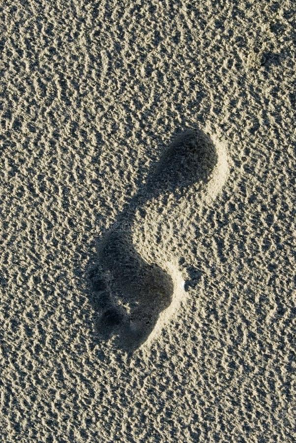 Download Bare Footprint On Schiermonnikoog Beach Stock Image - Image: 1934655