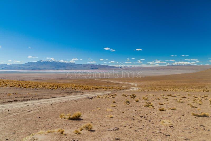 Bare landscape of bolivian Altiplano royalty free stock photo
