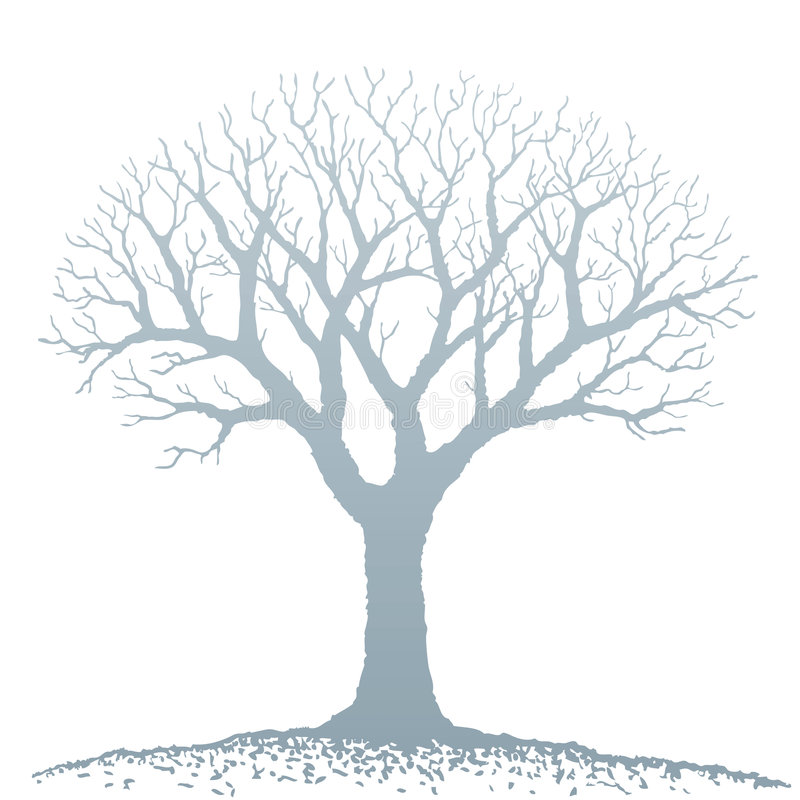 Free Bare Tree (vector) Royalty Free Stock Photo - 7565545