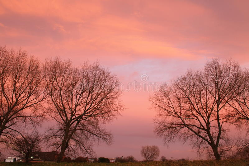 Bare winter trees and beautiful red sky. Landscape of dark winter tree silhouette and bright, colorful evening sunset sky stock photography