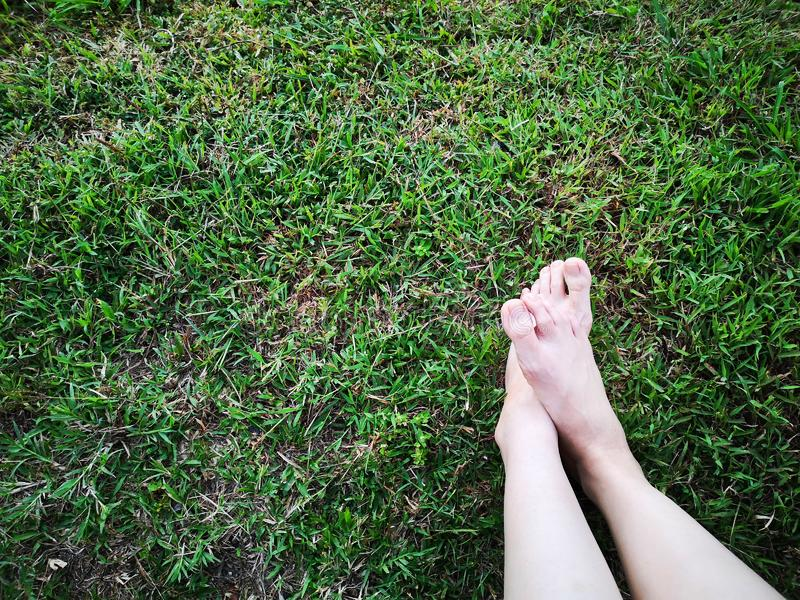 Bare Woman`s Feet on The Green Grass. Copy Space. Close Up of Feet on a Ground Grass royalty free stock photo