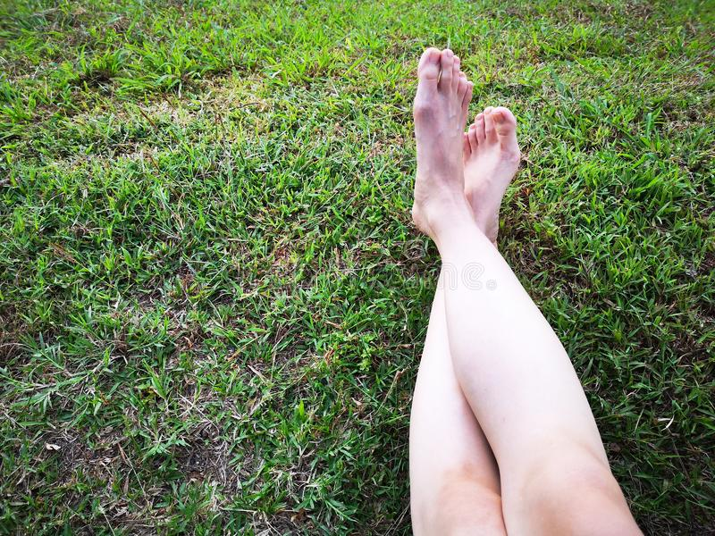 Bare Woman`s Feet on The Green Grass. Copy Space. Close Up of Feet on a Ground Grass stock images