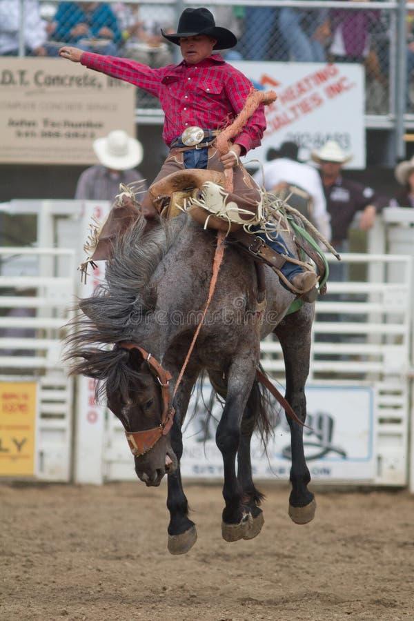 Bareback Sisters Oregon Prca Pro Rodeo 2011 Editorial