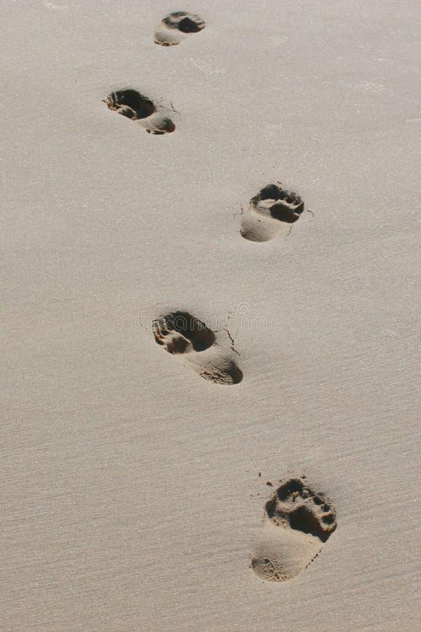barefeet śladów stóp mokry piasek obrazy royalty free