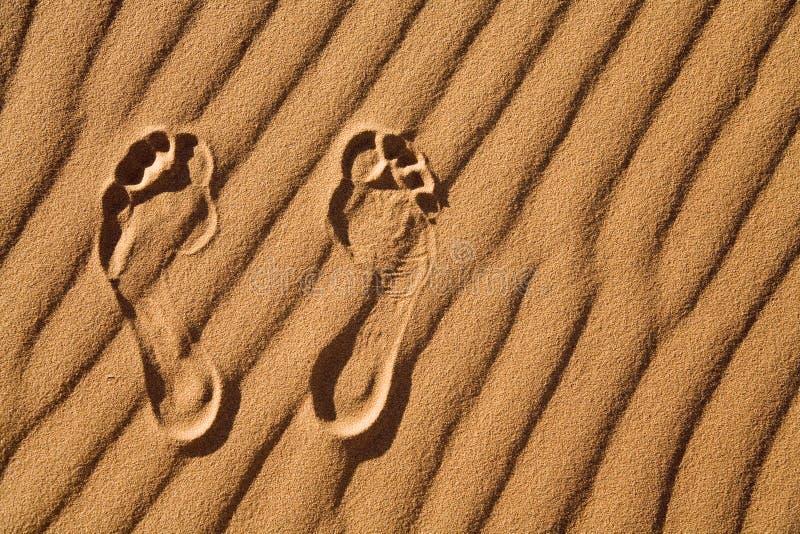 Barefoot. Namib Desert, Namibia, Africa stock image