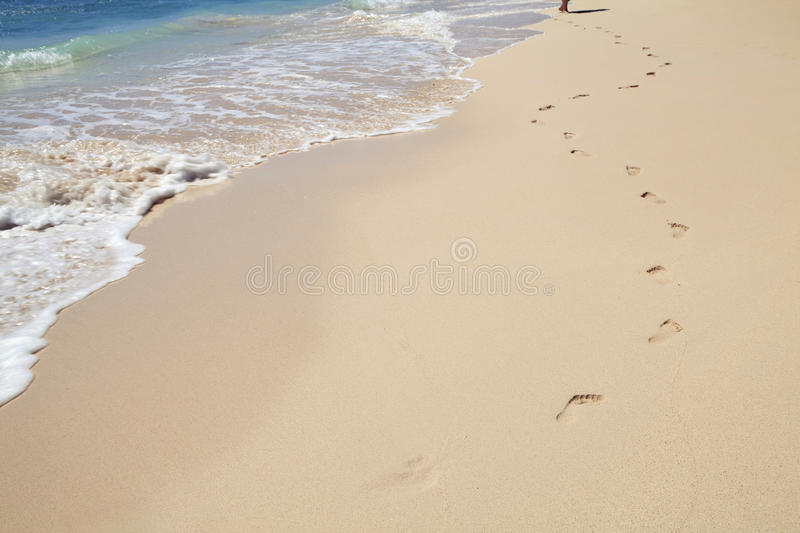 Download Barefoot in Barbados stock image. Image of sand, strolling - 14086569