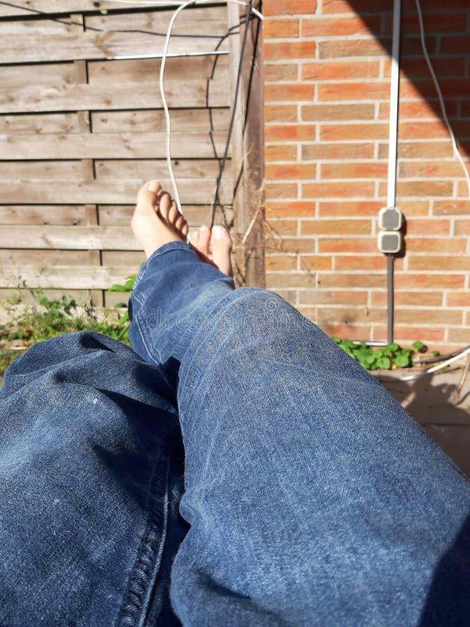 Barefoot in Jeans fotografia stock libera da diritti