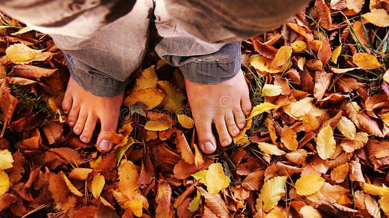 Barefoot In The Leaves Royalty Free Stock Photo