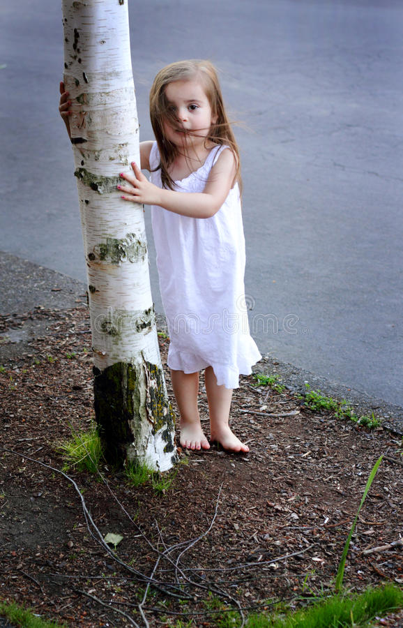 Barefooted Toddler by Tree. A closeup of a cute windblown barefooted little girl in a white summer dress standing by the trunk of a birch tree. Shallow depth of royalty free stock image