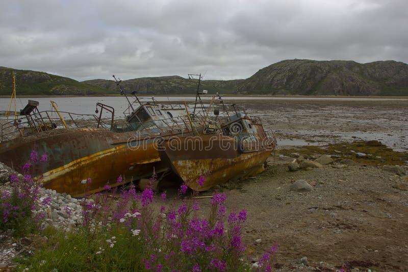 The Barents sea, Murmansk region, Russia stock photos