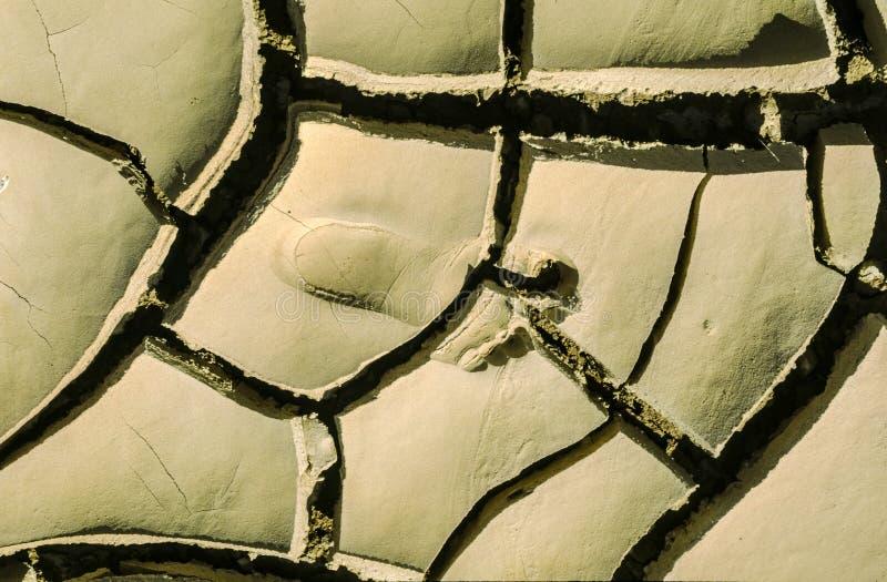 Barfüßigkennzeichen in der getrockneten Erde der Wüste stockfotos