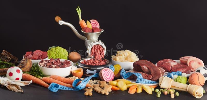 BARF食物的成份狗的 免版税库存图片