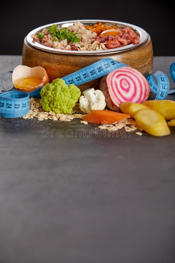 BARF meal diet for pets. Copy space royalty free stock image