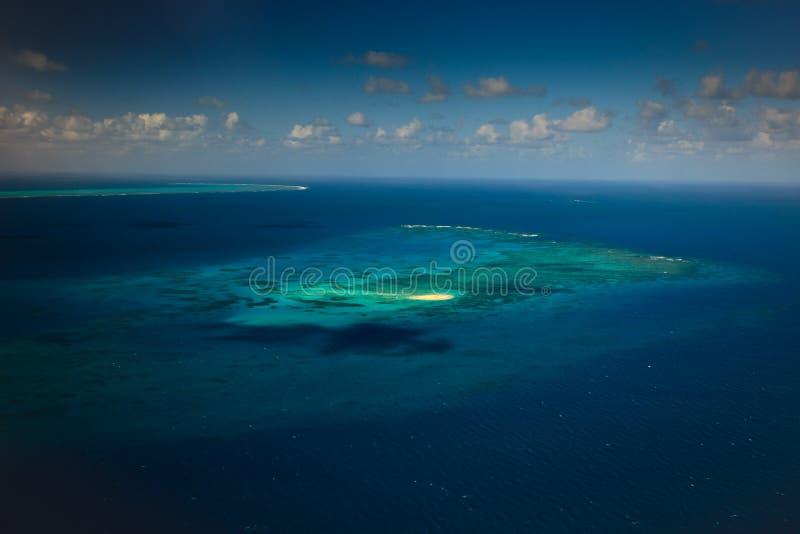 bariery cay wielki morski parka rafy upolu fotografia royalty free