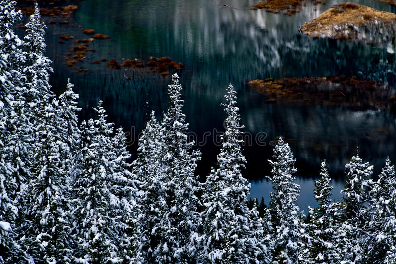 bariery jeziorna sceny zima obrazy royalty free