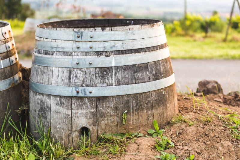 Baril de vin décoratif au vignoble images libres de droits