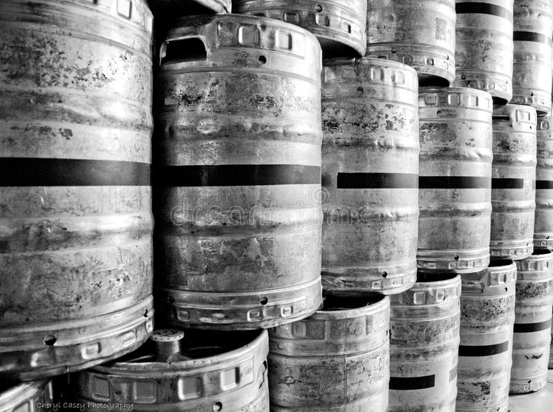 Barili di birra di Refridgerated fotografie stock libere da diritti