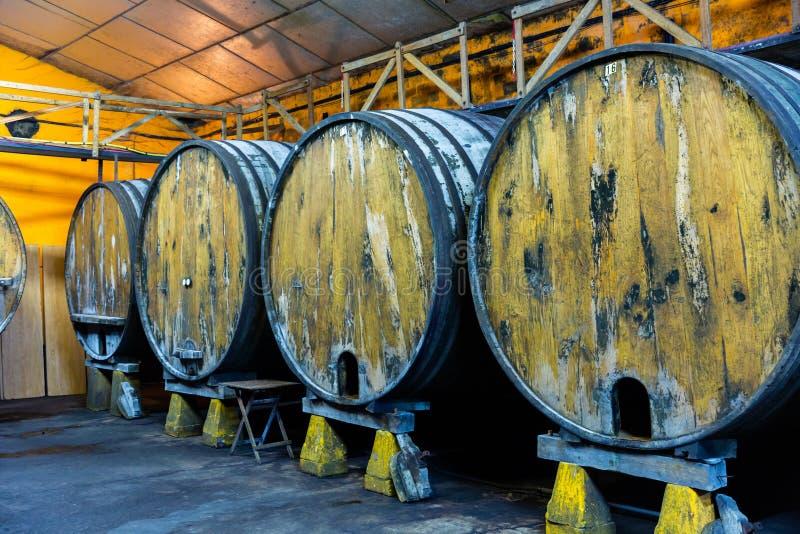 Barili di legno in file all'atrio contemporaneo di sidro. Asturie. Spagna immagini stock libere da diritti