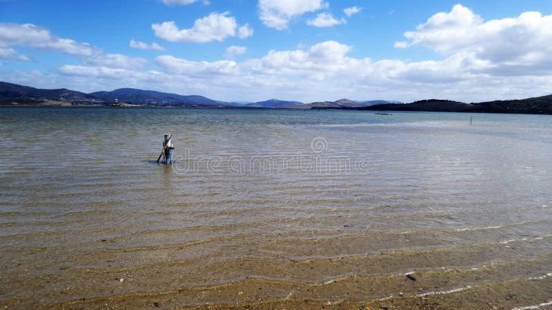 Barilla-Bucht, Tasmanien lizenzfreie stockbilder