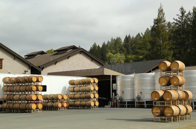 Barilotti della quercia e tini di fermentazione dell'acciaio inossidabile alla vigna fotografie stock