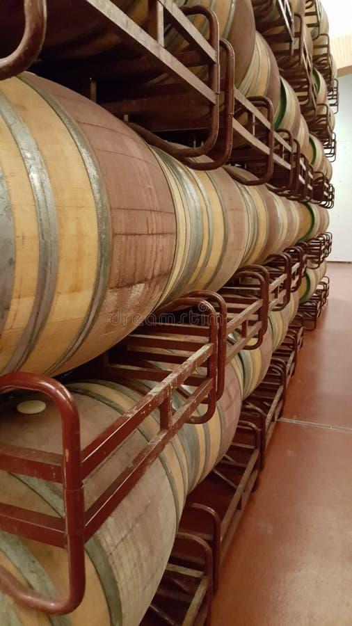 Barilotti di legno con vino impilato in cantina fotografia stock libera da diritti