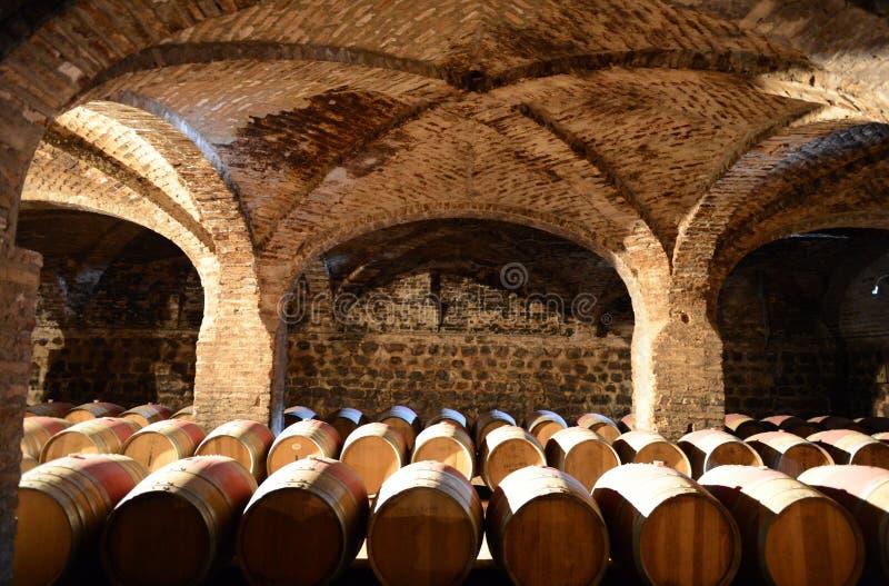 Barilotti di vino alla cantina Santa Rita immagini stock