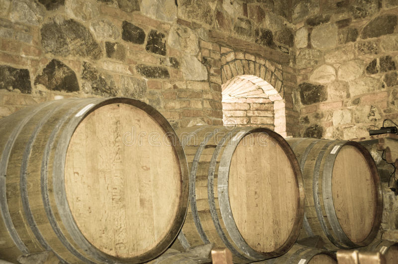 Barilotti di vino in cantina di pietra immagini stock libere da diritti