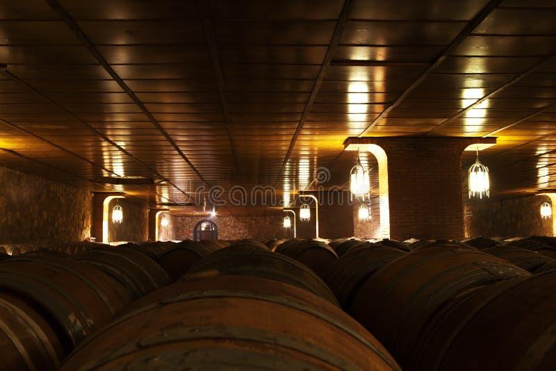 Barilotti di vino della quercia, La Rioja immagini stock libere da diritti