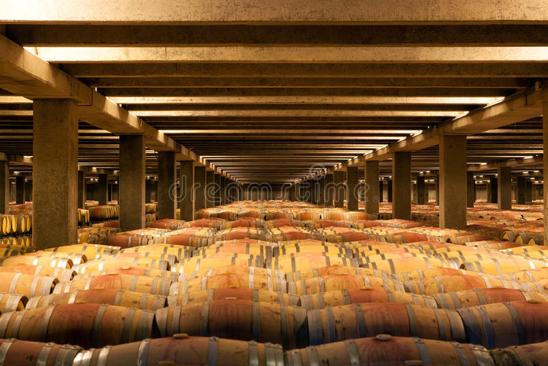 Barilotti di vino della quercia, La Rioja fotografia stock libera da diritti