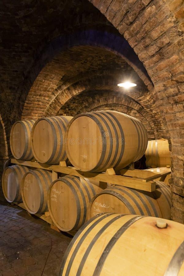 barilotti di vino nella cantina, Szekszard, Ungheria immagine stock