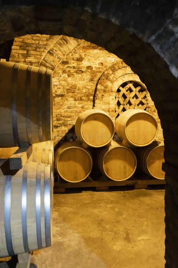 barilotti di vino nella cantina, Szekszard, Ungheria immagini stock