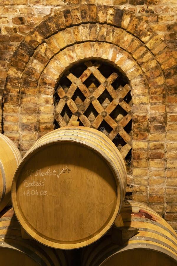 barilotti di vino nella cantina, Szekszard, Ungheria fotografia stock