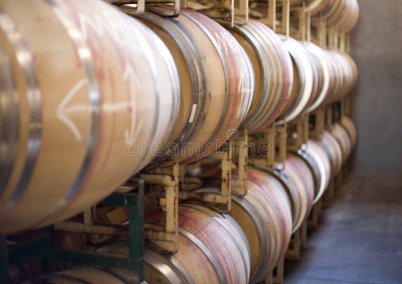 Barilotti di vino sulle cremagliere immagine stock