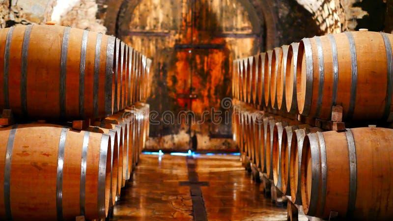 Barilotti di vino in una cantina immagine stock