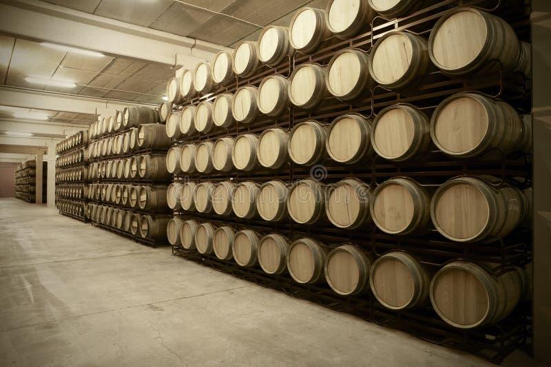 Barilotti di vino in una cantina di invecchiamento immagini stock libere da diritti