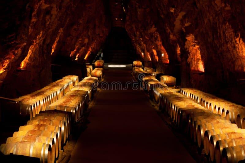 Barilotti di vino in una cantina, Francia fotografia stock