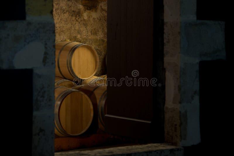 Barilotti in una cantina, attraverso la porta della cantina fotografia stock libera da diritti