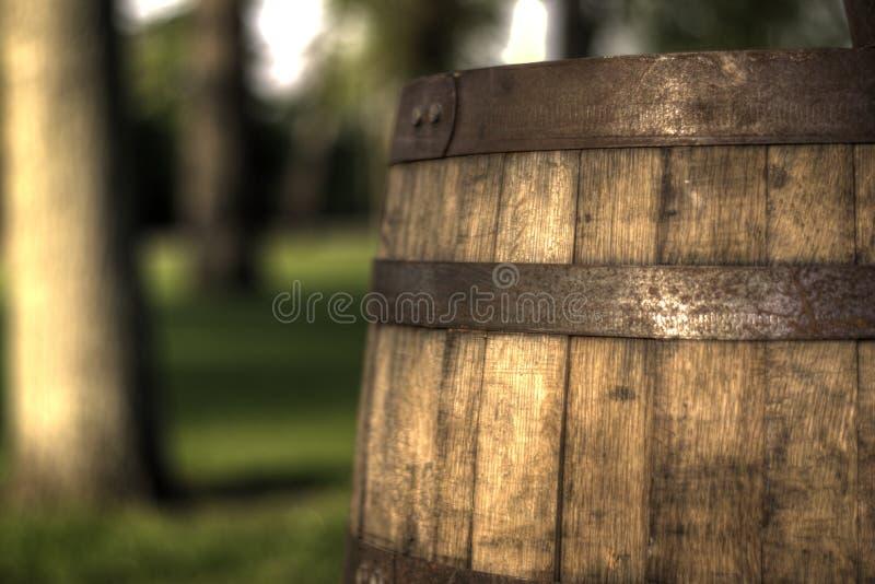 Barilotto di vino nel parco fotografia stock