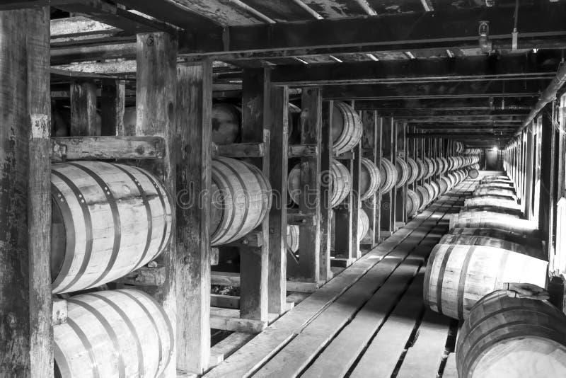 Barils de bourbon de vintage dans la maison de Rik image stock