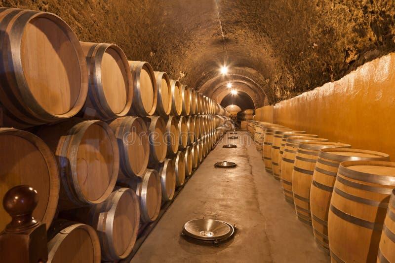 Barils de vin photos stock