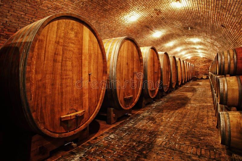 Barils de vin dans la cave photos stock