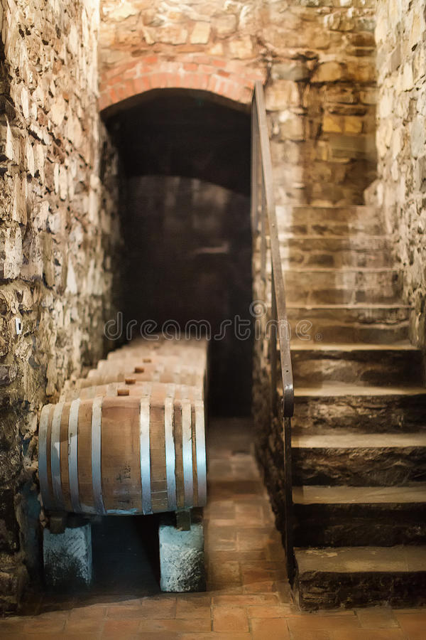 Barils de vin dans la cave photos libres de droits