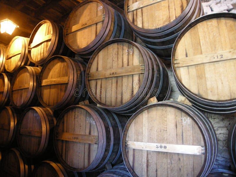Barils de vin pour les winelands gauches Portugal de vallée de Douro image libre de droits